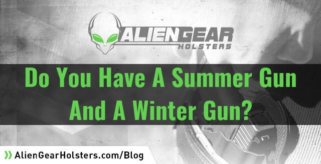 do you have a summer gun and a winter gun