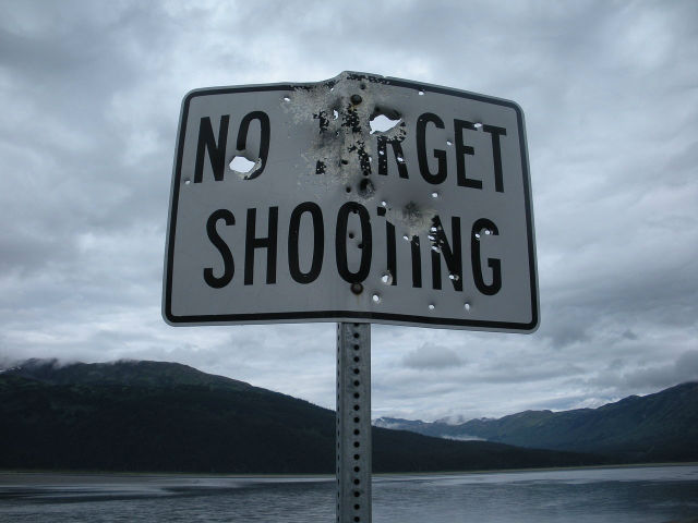 shooting targets guide