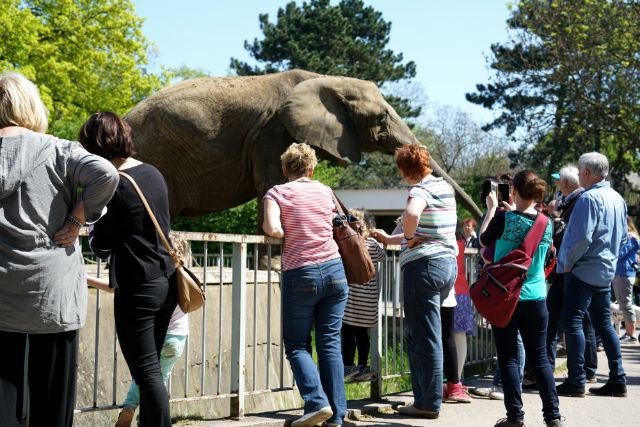zoo concealed carry laws